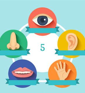 Conosci i tuoi sensi laboratorio bambini scoperta 5 sensi Leo scienza290x318