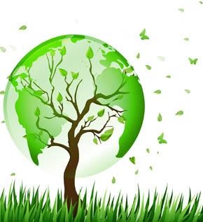 Pianeta verde 2 laboratorio piante regno vegetale fotosintesi sostenibilità scuola secondaria Leo Scienza 290x318