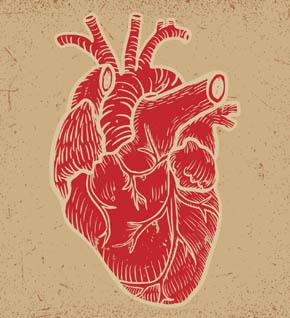 Viviamo con tutto il cuore Leo Scienza laboratorio scuola secondaria sangue corpo umano 290x318